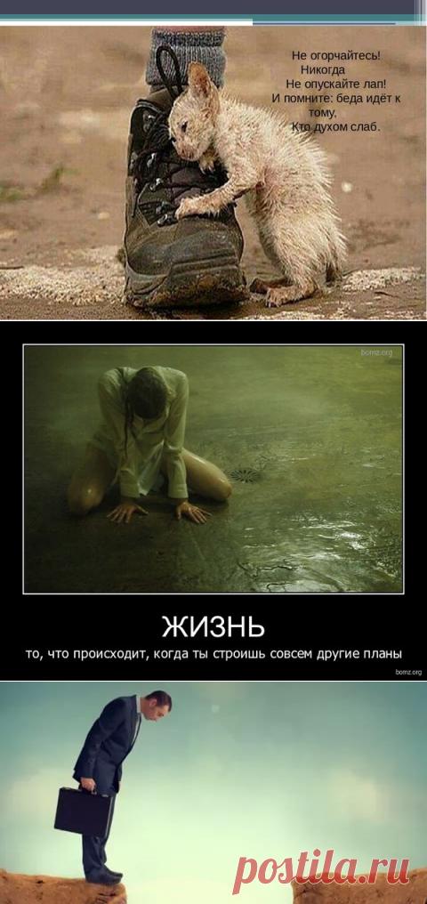 ВОСПОМИНАНИЯ В УГОЛОВНОМ ДЕЛЕ: «БУРЯ В СТАКАНЕ». | НАСБ.  | Яндекс Дзен