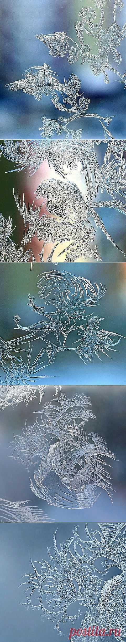 Зимние узоры | Фотоискусство