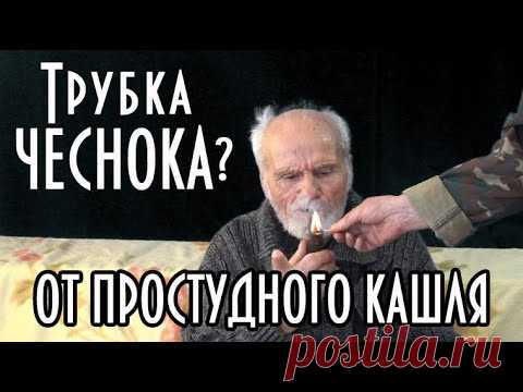 Эх порыбачим: Трубка чеснока, народное средство от простуды и кашля, терапия от дяди Т...