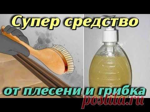 Чистящее средсво от плесени и грибка в домашних условиях Проверено годами Самые полезные советы - YouTube