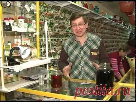 Миф о пользе марганцовки для рассады - YouTube