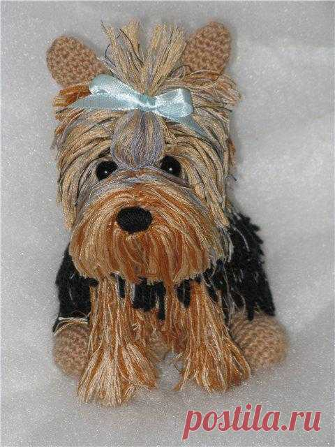 The kid Yorkshire terrier is connected by a hook. There is a detailed description.