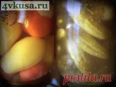 СОЛЕНЫЕ ОГУРЦЫ | 4vkusa.ru