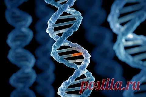 Мутация существенно не меняет генома: эксперт об изменчивости COVID-19 - Александр, 11 января 2021