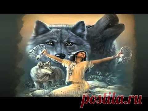 Oliver Shanti ~ Wolf Song (Shaman)  СКАЧАТЬ БЕСПЛАТНО альбомы с музыкой: http://uvlekatelnie-bonsai.ru/category/ugolok-otdyxa-na-uvlekatelnye-bonsaj/muzyka-v-stile-bonsaj-ili-zvuki-prirody/oliver-shanti-friends-existence