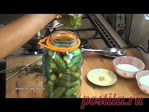 Маринованные огурцы - Видео рецепт / Видео рецепты / Рецепты / Шеф-повар – простые и вкусные кулинарные рецепты, фото-рецепты, видео-рецепты
