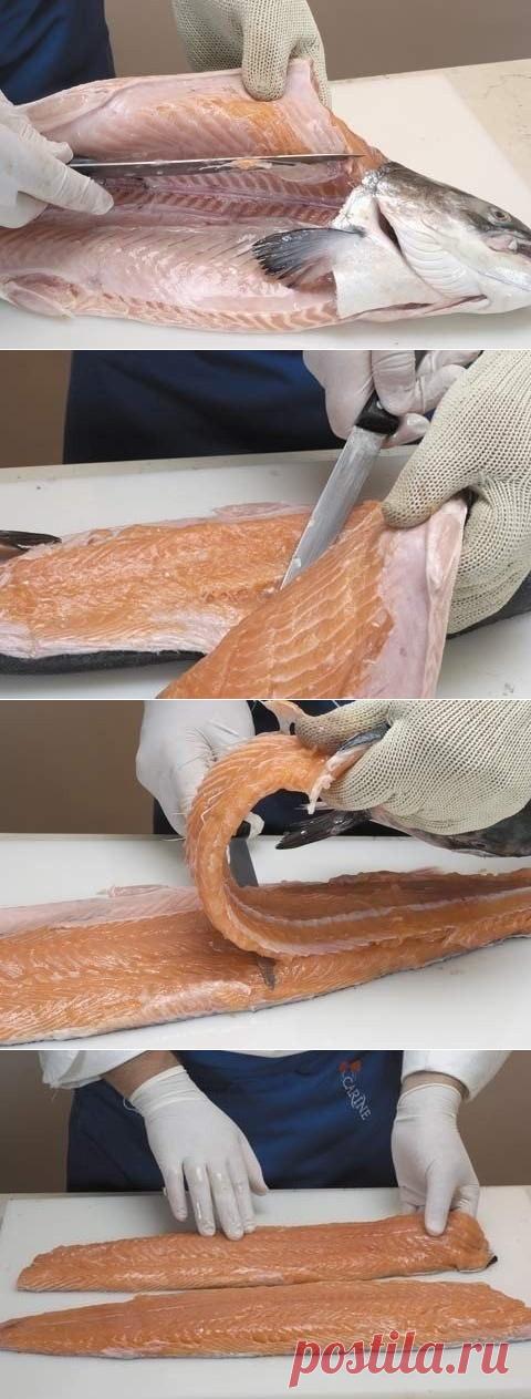 Как отделить рыбу от костей для фарширования или котлет поворачиваем нож параллельно столу и прорезаем рыбу вдоль хребта до хвоста, при этом нож прижимаем как можно ближе к хребту.