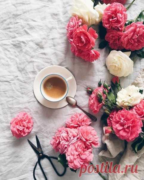 Красивого доброго утра!