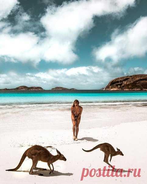 #Австралия@discoverygroup