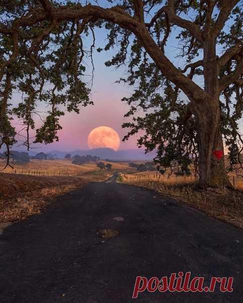 Дорога к Луне.
