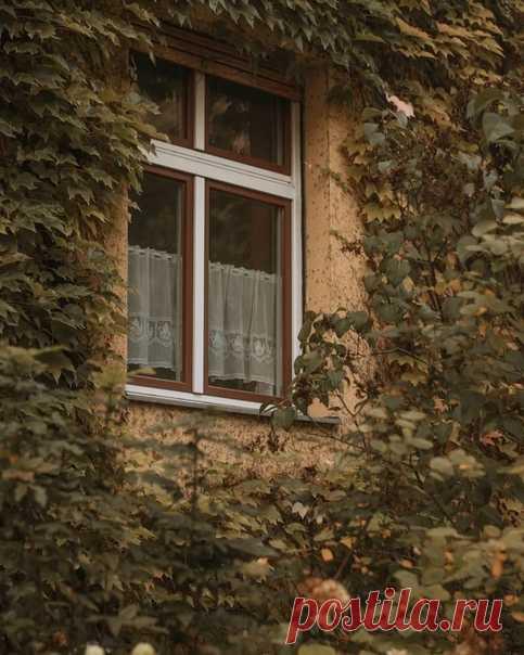 Осенний Берлин
