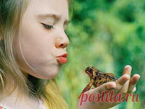 Бородавка у ребенка народные методы лечения Я с детства помню мамино предупреждение не трогать жаб, иначе будут большие бородавки. Но мы трогали несчастных земноводных. И действительно, у некоторых после