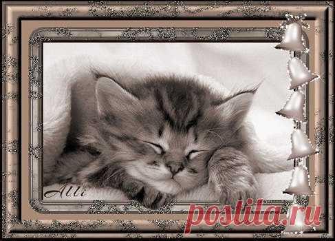 17 марта - Всемирный день сна  День сна планета отмечает, Пусть полноценным будет он, Пусть каждой ночью вас качает Лишь самый крепкий, добрый сон!  Здоровья крепкого добавит, А вместе с ним — побольше сил. Вас отдохнувшими оставит, Чтоб мир успехи приносил!  С всемирным днем сна я вас поздравляю, Выспаться вам хорошенько желаю. Пусть в ваших снах чудеса совершаются, Эльфы и гномы пусть вам улыбаются.