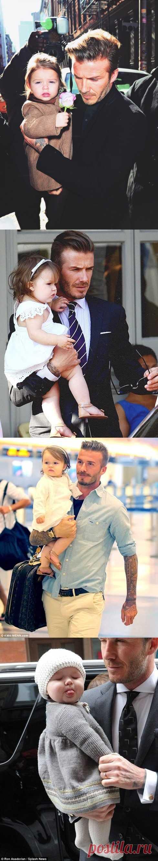 Девид Бэкхем с дочкой – четвертый ребенок футболиста