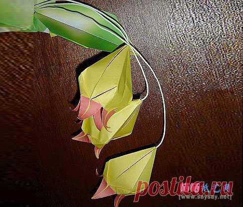 Bell las orquídeas del origami Entrar el libro de texto _ _ Origami Origami el Libro de texto - el secamiento en el sol el papel del arte la red