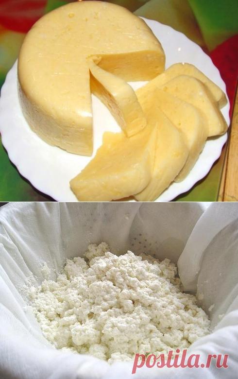 фавориты екатерины сыр из творога рецепт с фото пошагово салуне