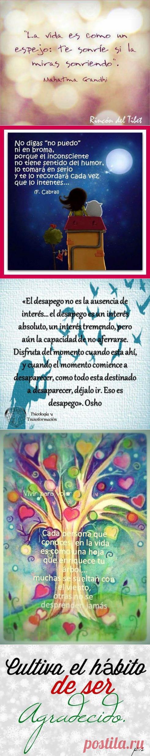 (98) Sandy Quintana
