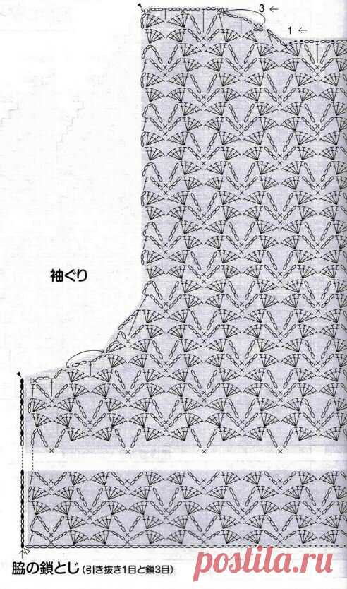 scale_1200 (492×834)