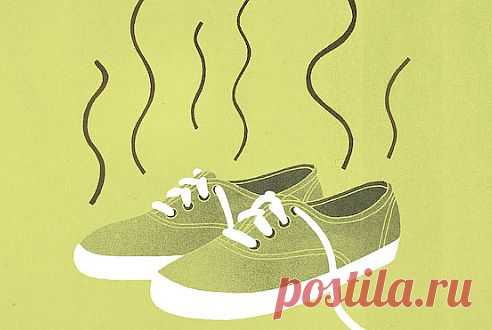 (+1) тема - Обувь без запаха | ВСЕГДА В ФОРМЕ!