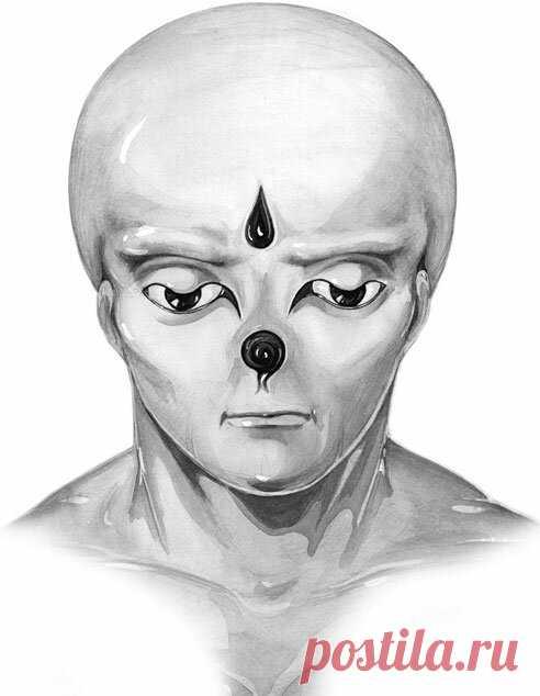 Лемурия (lemuria) - цивилизация породившая человечество: Происхождение, теории, мифы, нечеловеческие образы лемурийцев  Часть 1 Lemuria - одна из первых цивилизаций на планете Земля, которая была создана высокоразвитыми инопланетными существами, которые пришли с планеты, расположенной на противоположной стороне от нас. Это была цивилизация, которой принадлежали все технические достижения, которыми мы обладаем сегодня, такие как машины, самолёты, телевидение, автомобили и электричество. Лемуры …