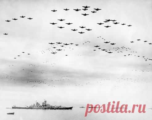 Во время войны нацистские войска скрывали свой самый большой корабль «Тирпитц» облаками токсичного дыма. Память об этом сохранили деревья