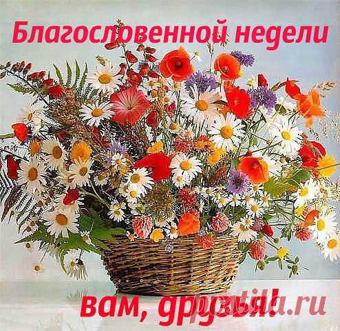 image (494×480)