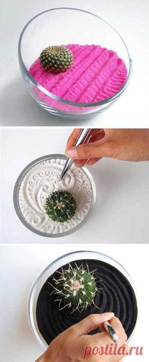Избавляемся от стресса в компании кактусов на подойнике вашего окошка.