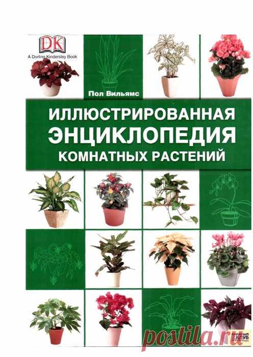 Энциклопедия комнатных растений. Пол Вильямс