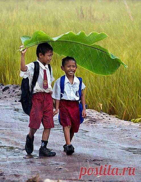 Для кого-то дождь - ностальгия и почти депрессия, а для кого-то счастье