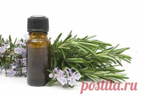 Эвкалиптовое масло: домашние рецепты здоровья  Эвкалиптовое масло по виду выглядит, как смолянистая жидкость, бесцветная либо с желтоватым оттенком. Оно имеет хвойный запах, хотя у растения хвои нет, а относится оно к семейству миртовых.Эвкалип…