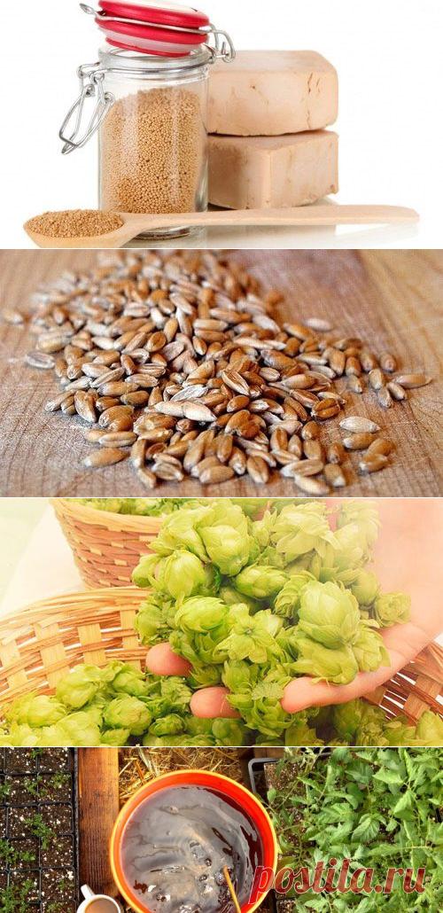 Натуральные удобрения в домашних условиях