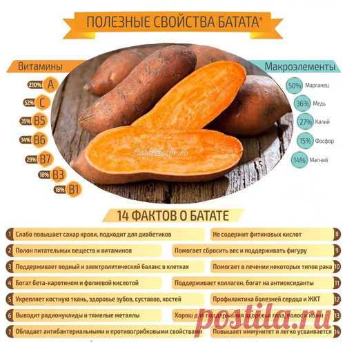 Картофель сладкий (батат) - калорийность, полезные свойства, польза и вред, описание - Calorizator.ru