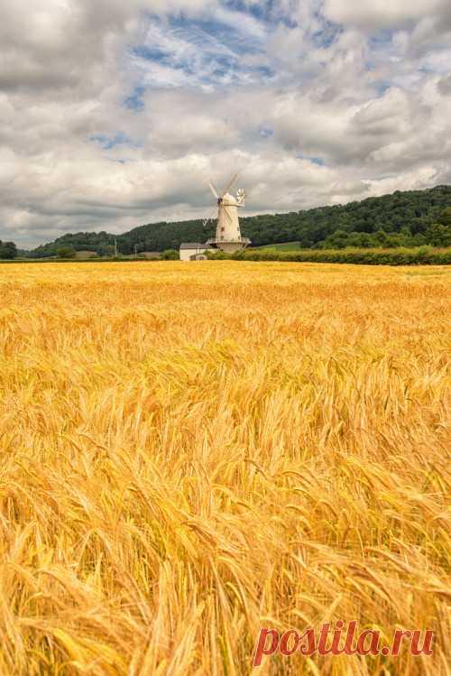 Szibarita   lovewales: Usk Valley Windmill, Llancayo   by...