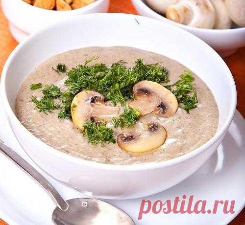 Мастер-класс: крем-суп из шампиньонов