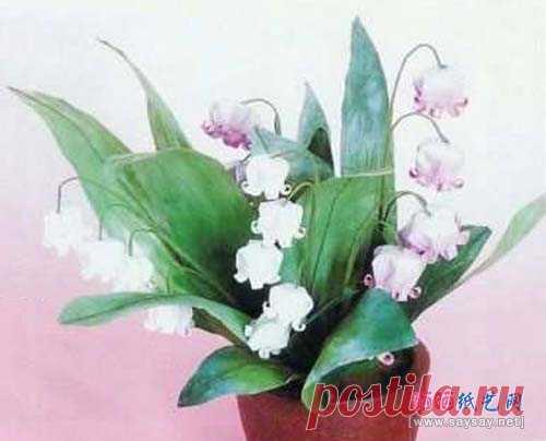 El origami simple la campanilla la flor de la orquídea abatible la tarjeta el libro de texto _ _ Origami Origami el Libro de texto - el secamiento en el sol el papel del arte la red