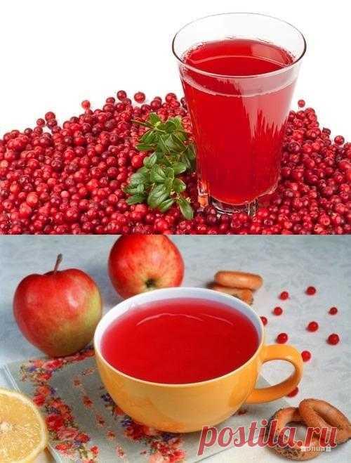 Морсы – полезные и вкусные напитки для всей семьи