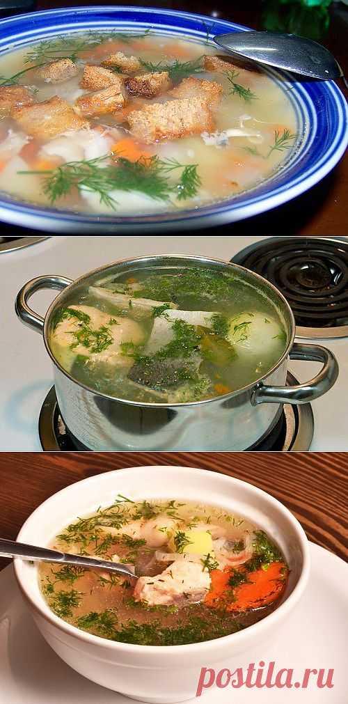 Уха из лососевых: готовим вкусный домашний суп / Простые рецепты