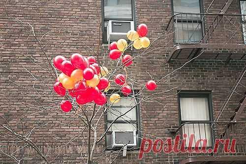 Шарики на дереве / Городская среда (граффити, снеговики, ets) / Модный сайт о стильной переделке одежды и интерьера