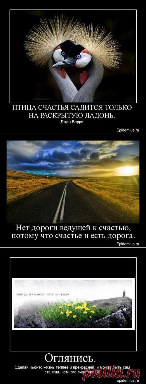 Птица счастья садится только на раскрытую ладонь. (Джон Берри). Демотиваторы про счастье.
