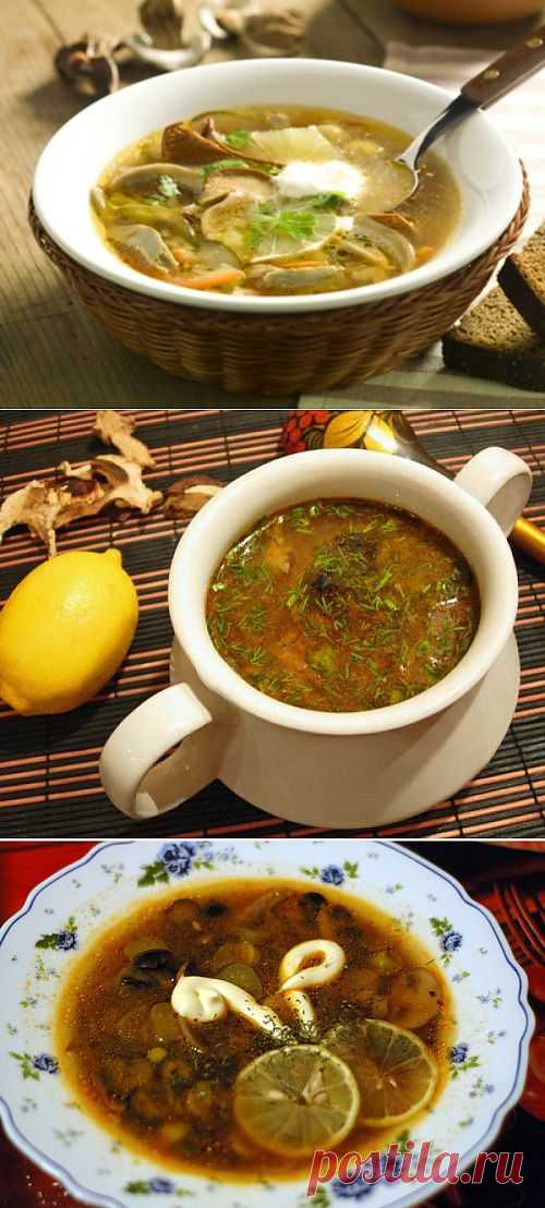 Солянка бывает разной: 4 рецепта вкусных грибных солянок / Простые рецепты