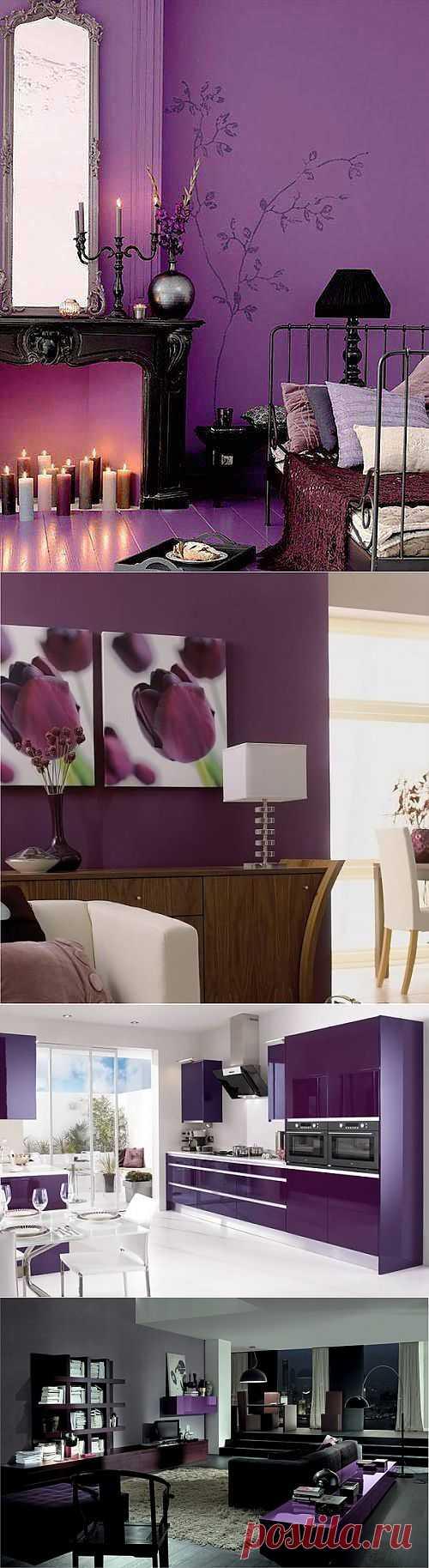 Кто любит фиолетовый? | Наш уютный дом