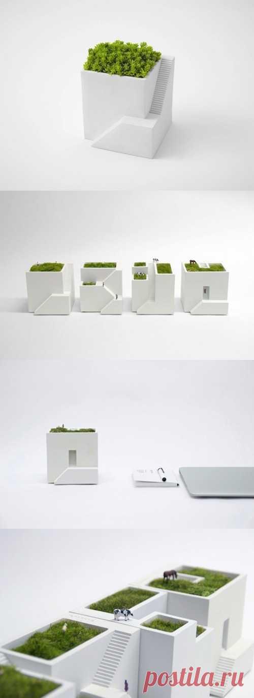 Необычные горшки для комнатных растений.