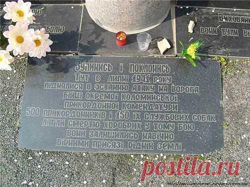 На Черкащине есть уникальный памятник 150 пограничным псам, которые «порвали» полк фашистов в рукопашном бою Эта единственная за всю историю мировых войн и конфликтов битва людей и собак произошла в самом центре Украины много лет назад  Посмотреть полностью: http://www.spletnik.ru/blogs/pro_zvezd/77210_podvig-lyudey-i-bratev-nashikh-menshikh