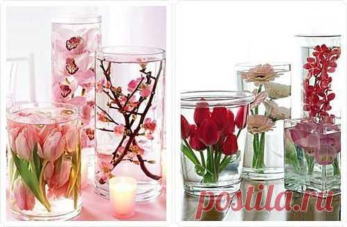 Цветы в глицерине — мастер класс | My Milady