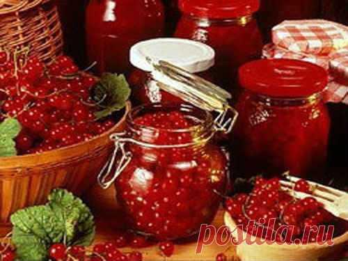 Джем из красной смородины - рецепт на зиму