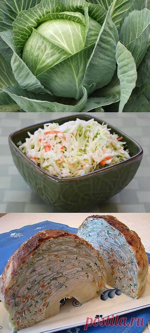 Капуста в разных кухнях мира: вкусные и интересные блюда / Простые рецепты