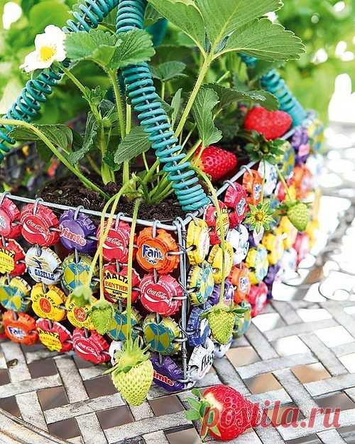 Оригинальный горшочек для домашних цветов