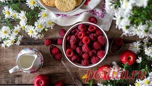 Желе из малины на зиму - ТОП лучших простых рецептов (фото)