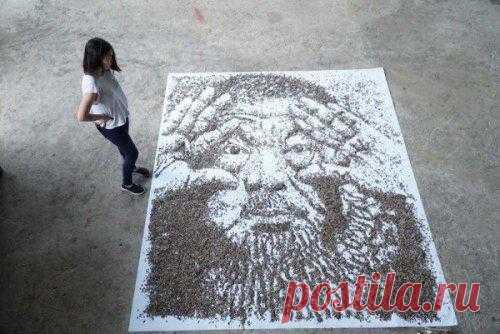 El retrato de 20 000 semillas de los girasoles de Hong \