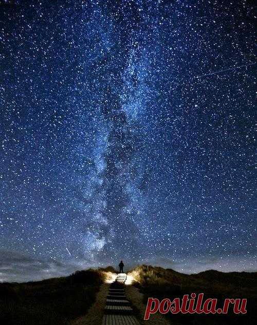 Звезды над головой